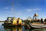 Дайвинг и путешествия вместе с клубом ORCA